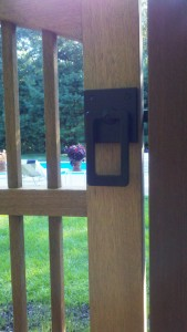 Close-Up View of Modern Ring Latch with Rectangular Handle with peek of the lovely pool area behind.