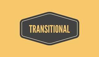 Transitional Style Kitchen Cabinet Hardware